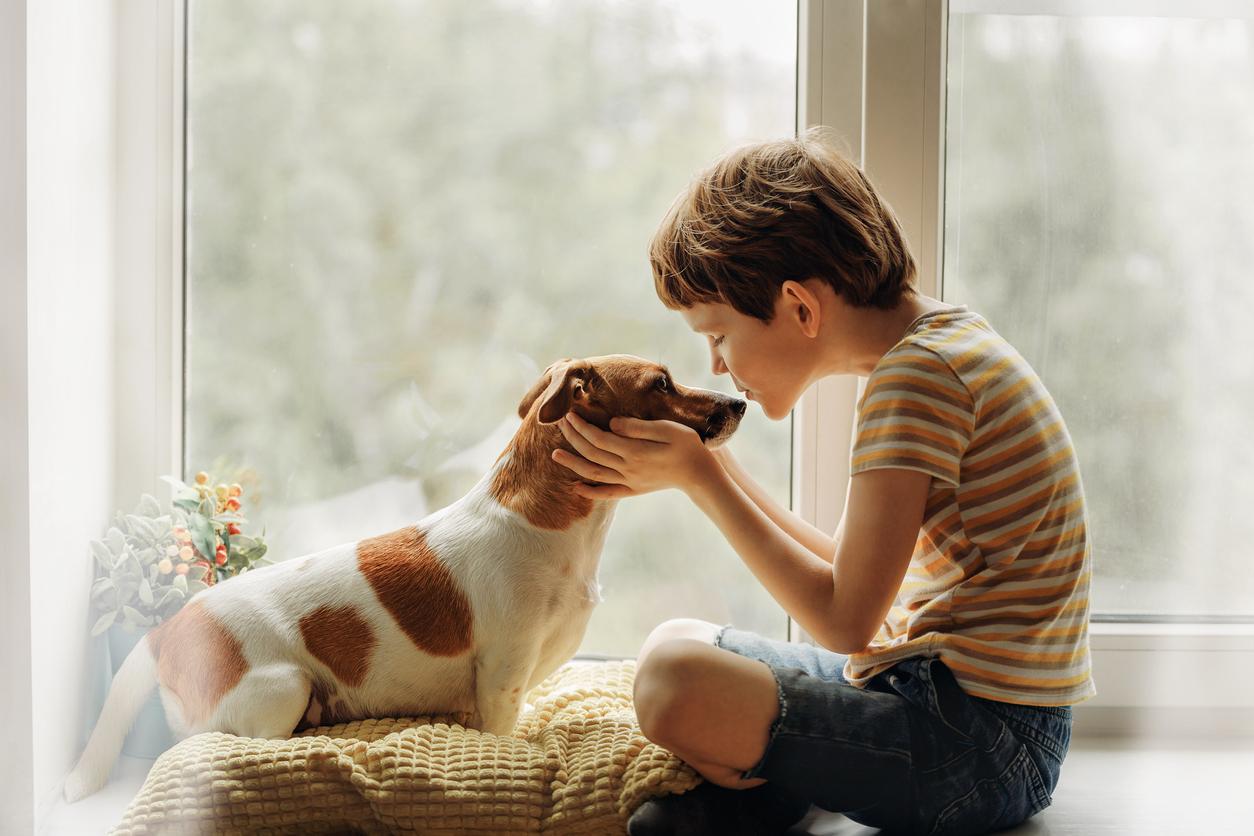Las mascotas nos reinician la vida